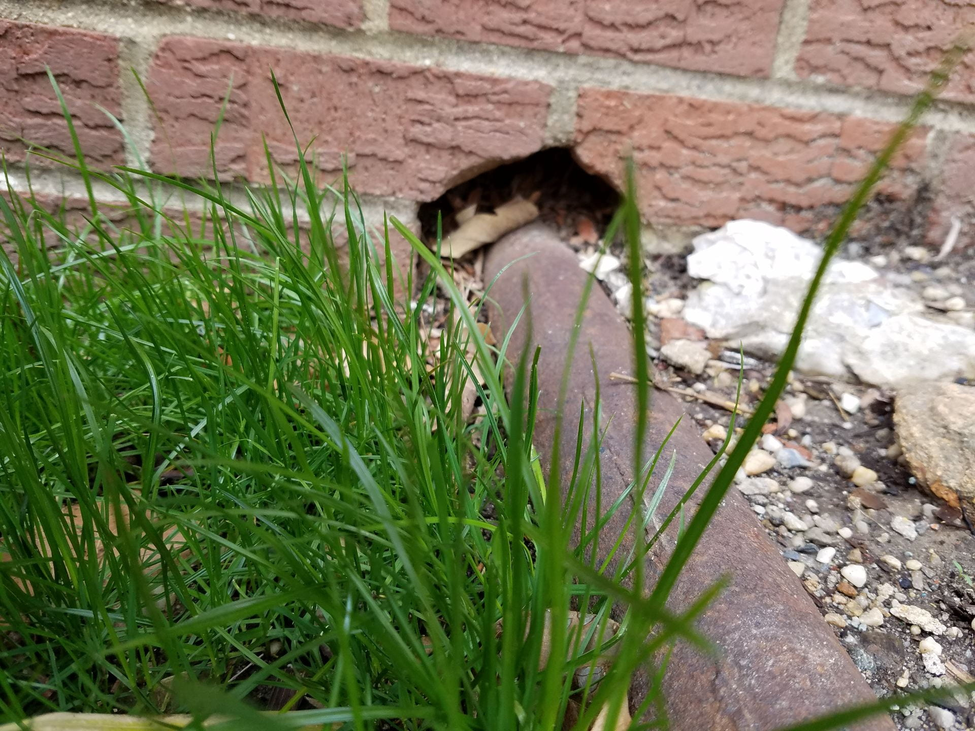 "Photo shows a large2-3"" gap around a pipe going into a brick wall foundation"