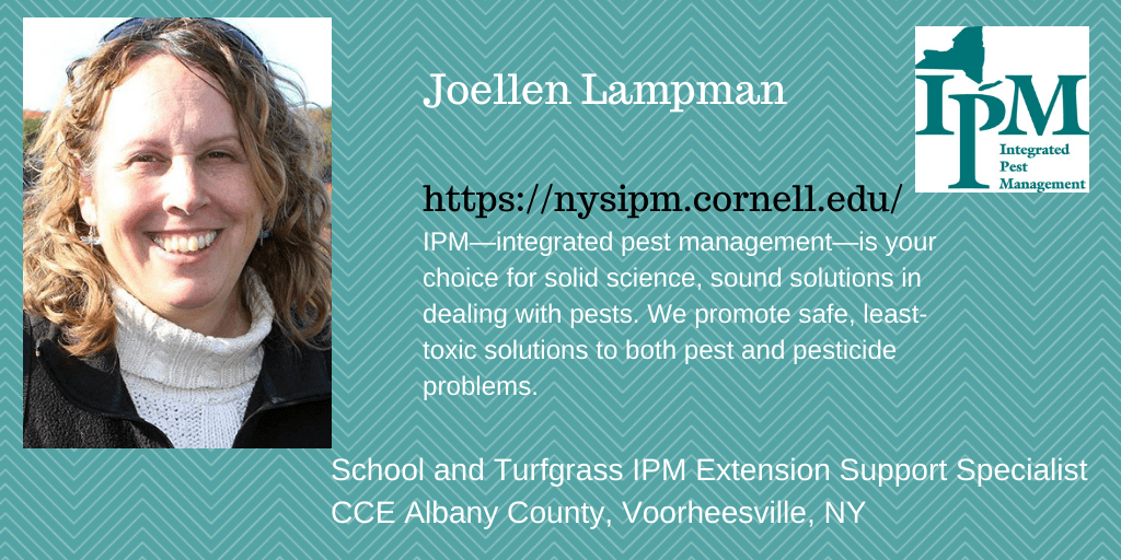 a graphic showing a photo of Joellen Lampman and her role at New York State Integrated Pest Management. She is the school and turfgrass specialist and is located in the Albany Cooperative Extension Office in Voorheesville.