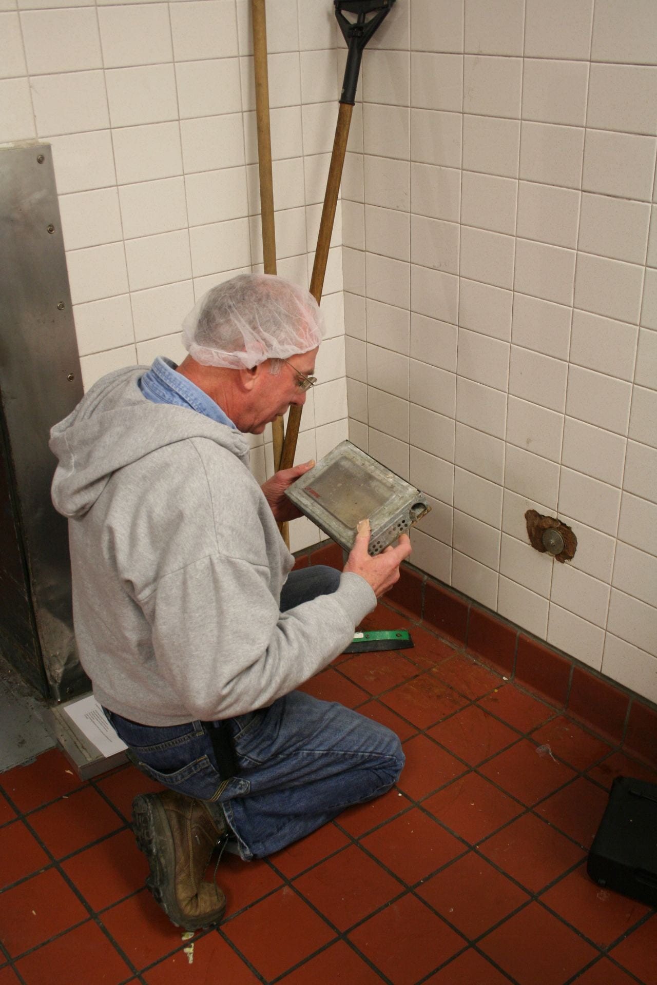 photo shows someone checking an insect trap for signs of activity inside a school kitchen.