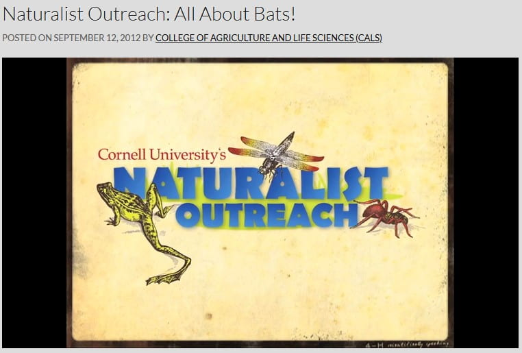 photo of the title to a video about bats from the Cornell University Naturalist Outreach program
