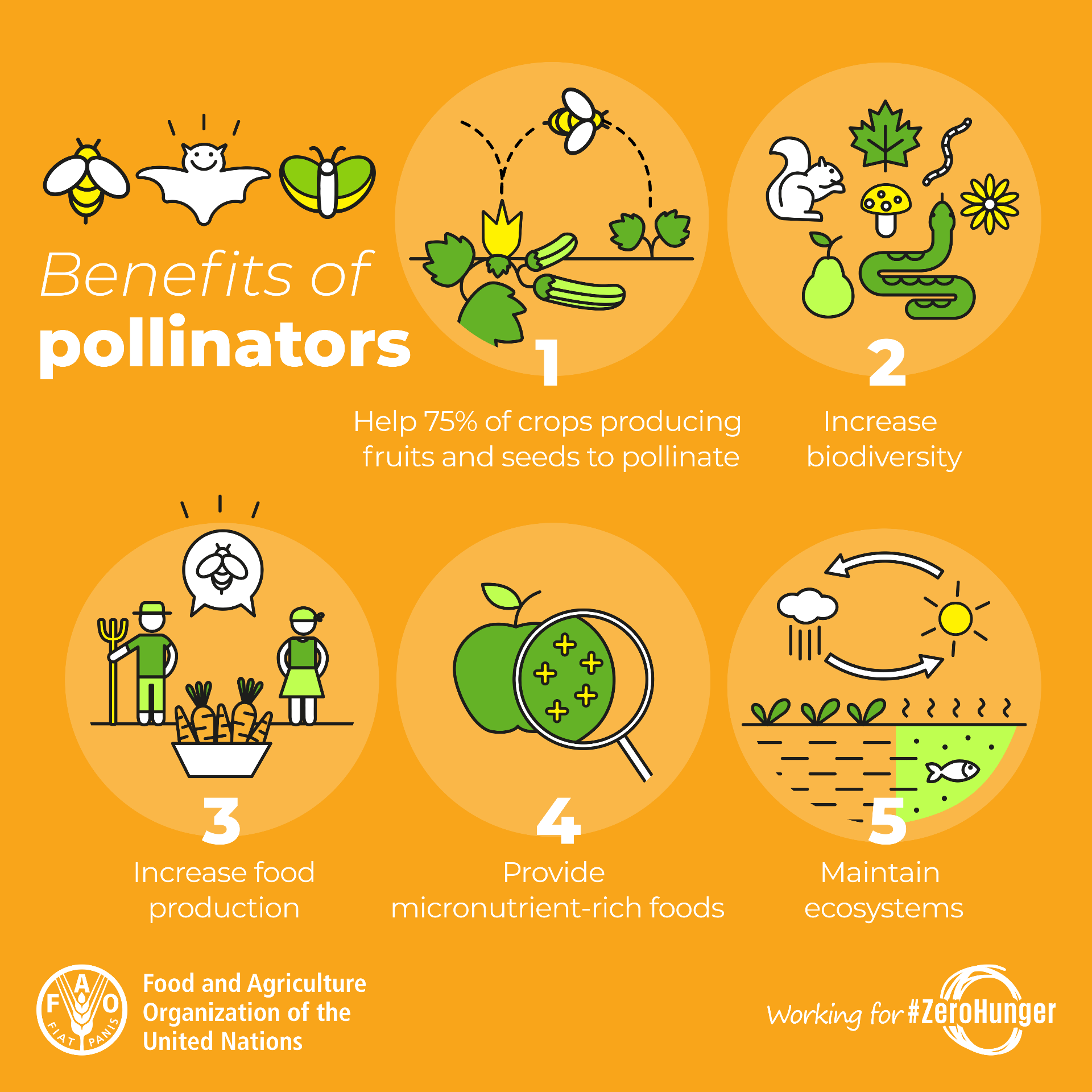 benefits of pollinators poster
