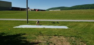 Lindsey Christiansen is pinning a clear plastic sheet down over existing lawn.