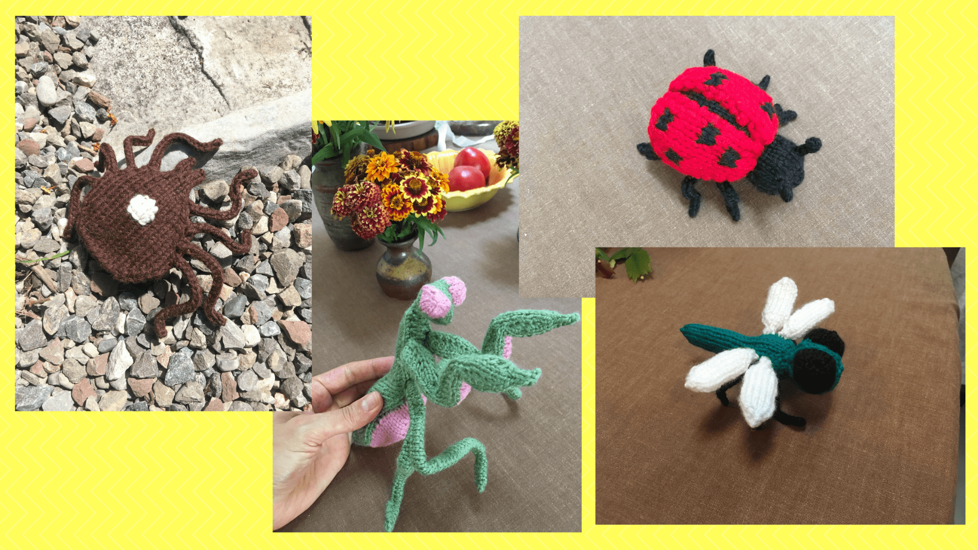 graphic shows four photos of animals knitted by Amara