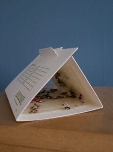 A triangle-shaped cardboard moth trap with moths caught on the sticky surface inside the folded structure