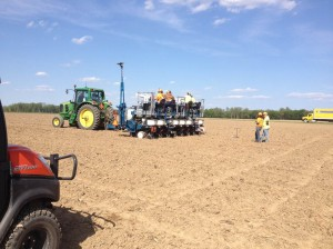 Planting corn trials