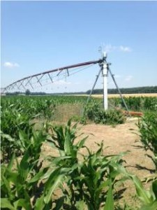 Irrigation rig near Salisbury, MD