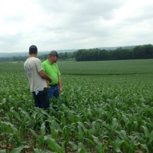 My DSM (green shirt) out with a grower looking at a test plot comparing varieties of seed side-by-side.
