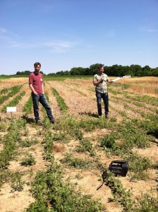 Matt Ryan explains his research with cover crops