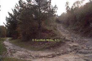 "Road we took up to Peña Tu. Taken from ""http://www.vivirasturias.com/asturias/llanes/idolo-de-peña-tu/es/fotos."""