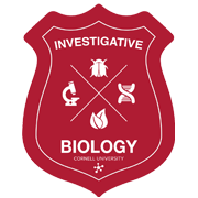 "An image of a red shield with the words Investigative Biology printed in white. There is a white ""X"" in the middle of the shield, and in each quadrant of the ""X"" there is a beetle, DNA helix, leaf, and microscope respectively, each representing a different branch of biology. This is the course logo."