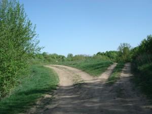 no-attribution-cc0-public-domain-roads-320371