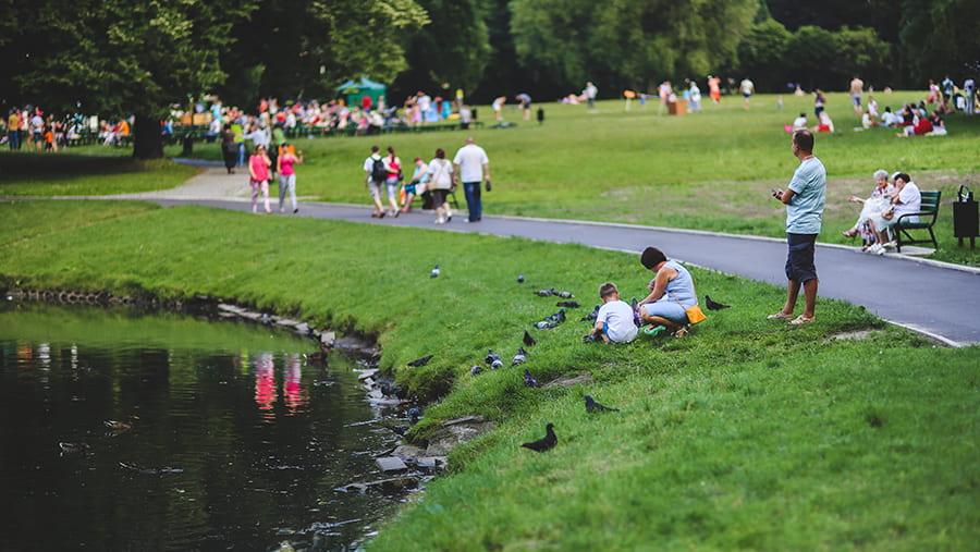 park along pond