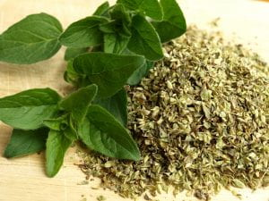 Fresh and Dried Oregano