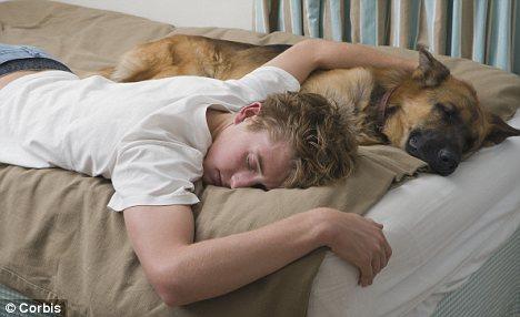 Health teen health teen sleep — photo 1