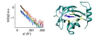 proteinconform_1