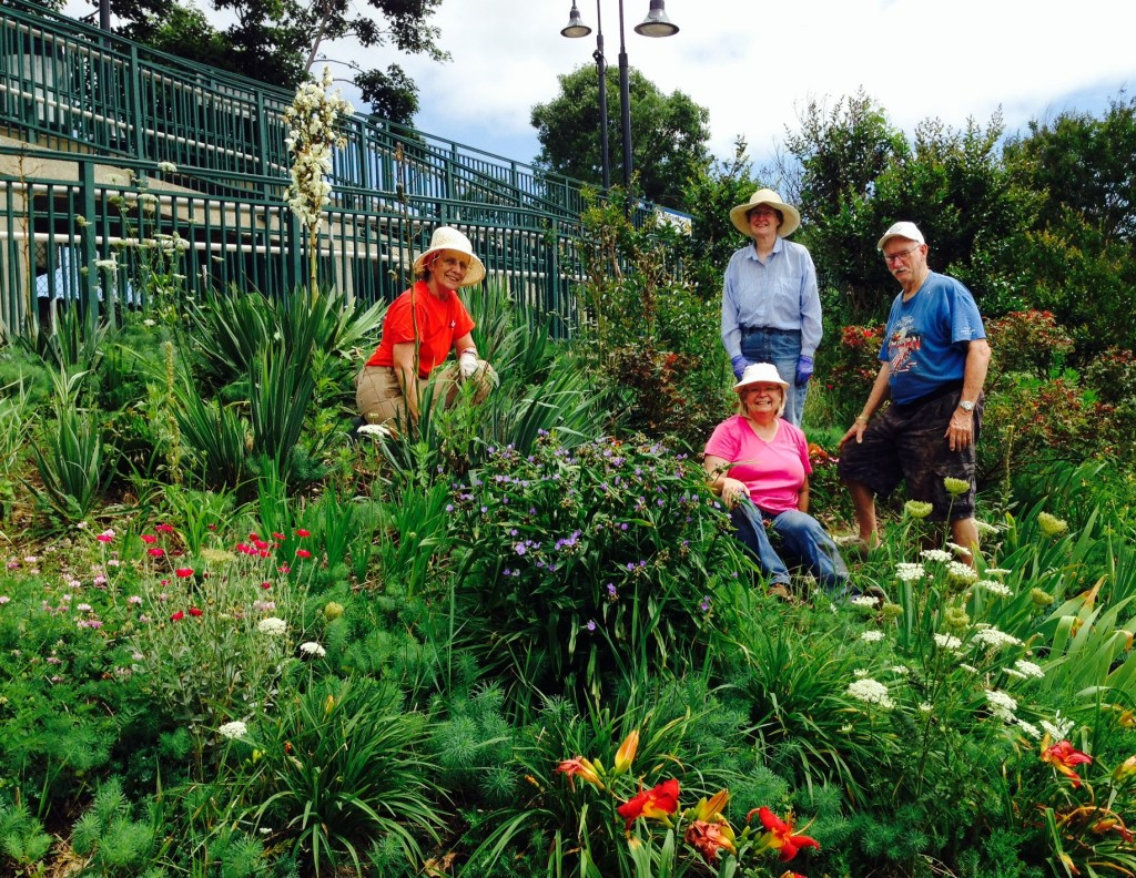 Master Gardener Volunteers use drought-tolerant plants to beautify Medford Train Station.