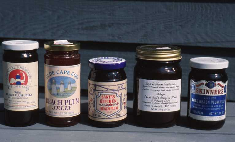 Preserves and jellies - value-added beach plum products.