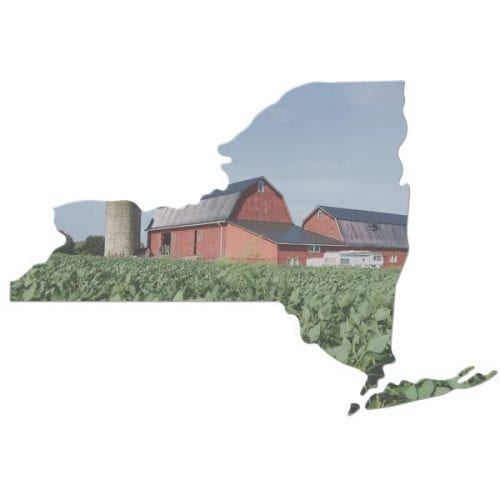 NYS outline and farm