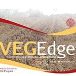 Veg Edge