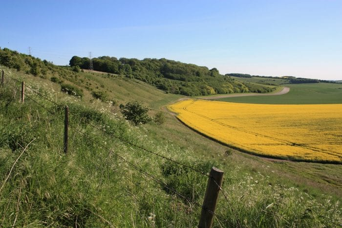Agricultural landscape in Wiltshire, England Image by Greg Larcombe