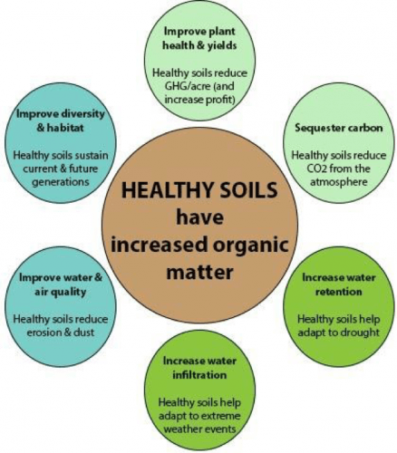 health soils have increased organic matter