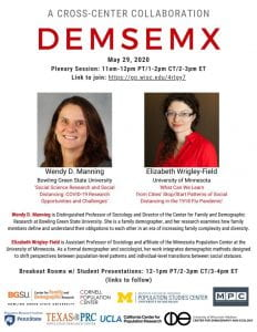 DemSemX Flier