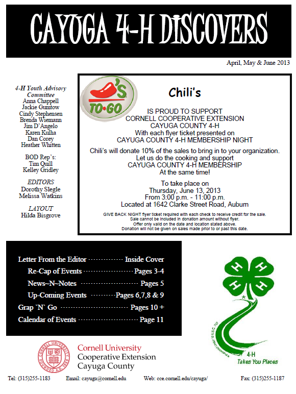4-H News Letter for April to June 2013 preview