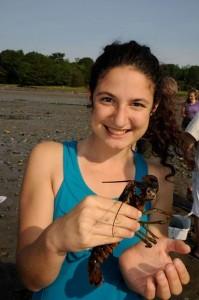 Sierra Lobster