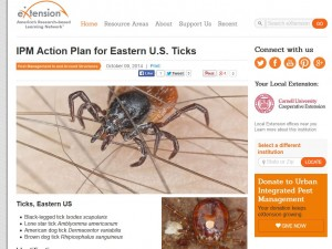 IPM action for ticks from EXtEnsion