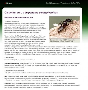 Sample of Carp Ant BMP page
