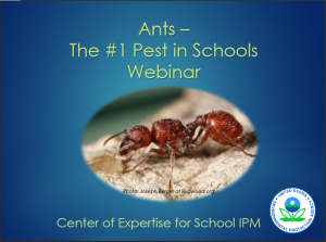 Ants - The #1 Pest in Schools is one of many webinars offered by the EPA Center of Expertise for School IPM.