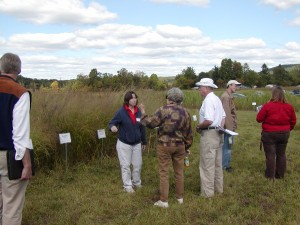 Dr. Hilary Mayton discusses perennial grass field plot trials at Cornell University.