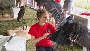 Cornell Raptor Program Assessment project