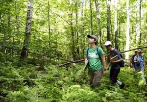 Future Forests Engaged Undergraduate Research Grant