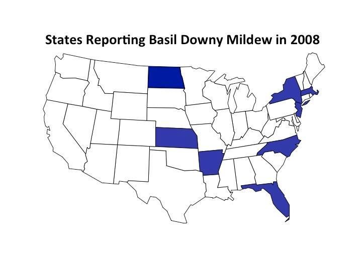 bdm map 2008
