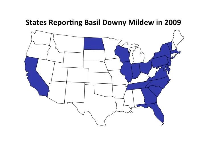 bdm map 2009