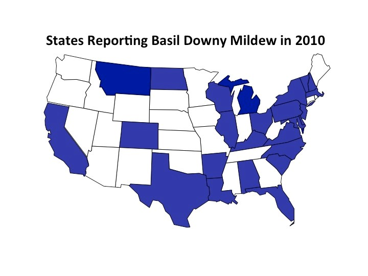 bdm map 2010