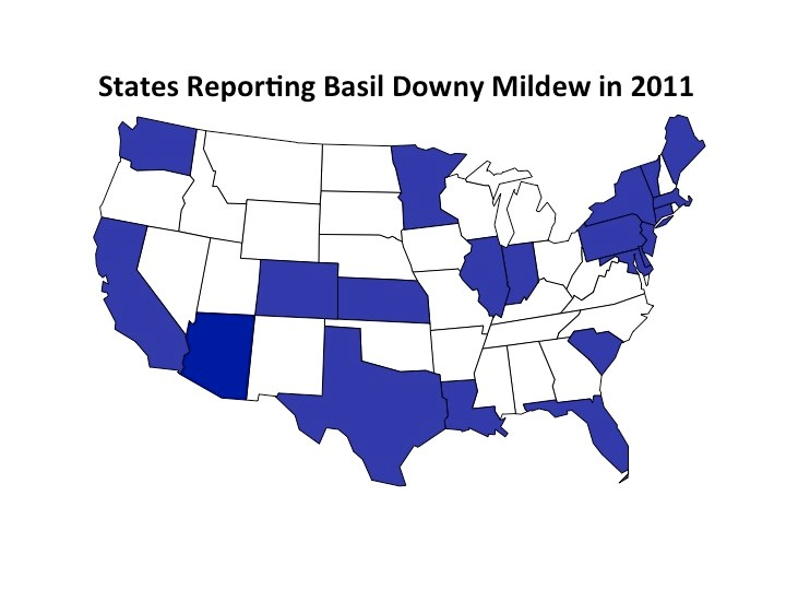 bdm map 2011