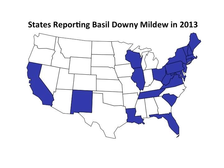 bdm map 2013