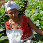 african farmer with bags of phosporous fertilizer