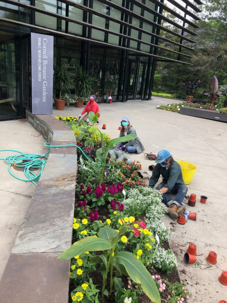 The 2020 planting crew outside the Nevin Welcome Center at the Cornell Botanic Gardens