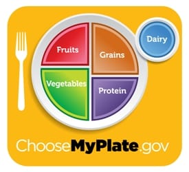 My Plate image showing the daily amount of fruit, vegetables, grains, protein and dairy.