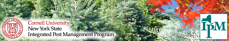Tree Integrated Pest Management