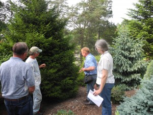 Growers taking notes on new tree species they may want to add to their plantings at Cornell Plantations.