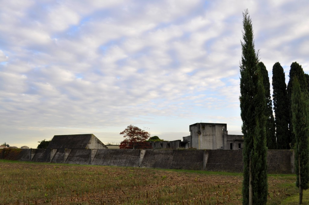 Brion Cemetery surrounded by corn fields