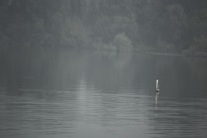 In the morning, the nearby lakes always are covered by a beautiful fog. Photograph by Andres Romero Pompa.