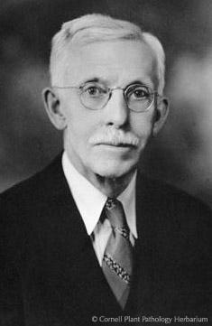 F.C Stewart himself