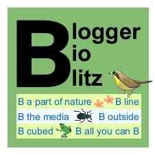 Blogger Bioblitz logo