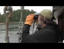 Paul Stamets hunting Agarikon