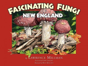 Fascinating Fungi, by L. Millman